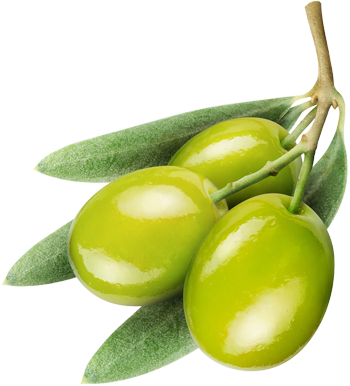 uploads olives olives PNG14299 5