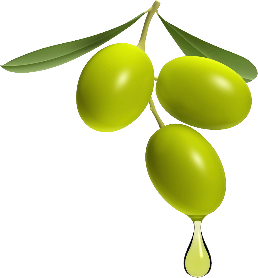 uploads olives olives PNG14308 3