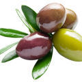 uploads olives olives PNG14312 19