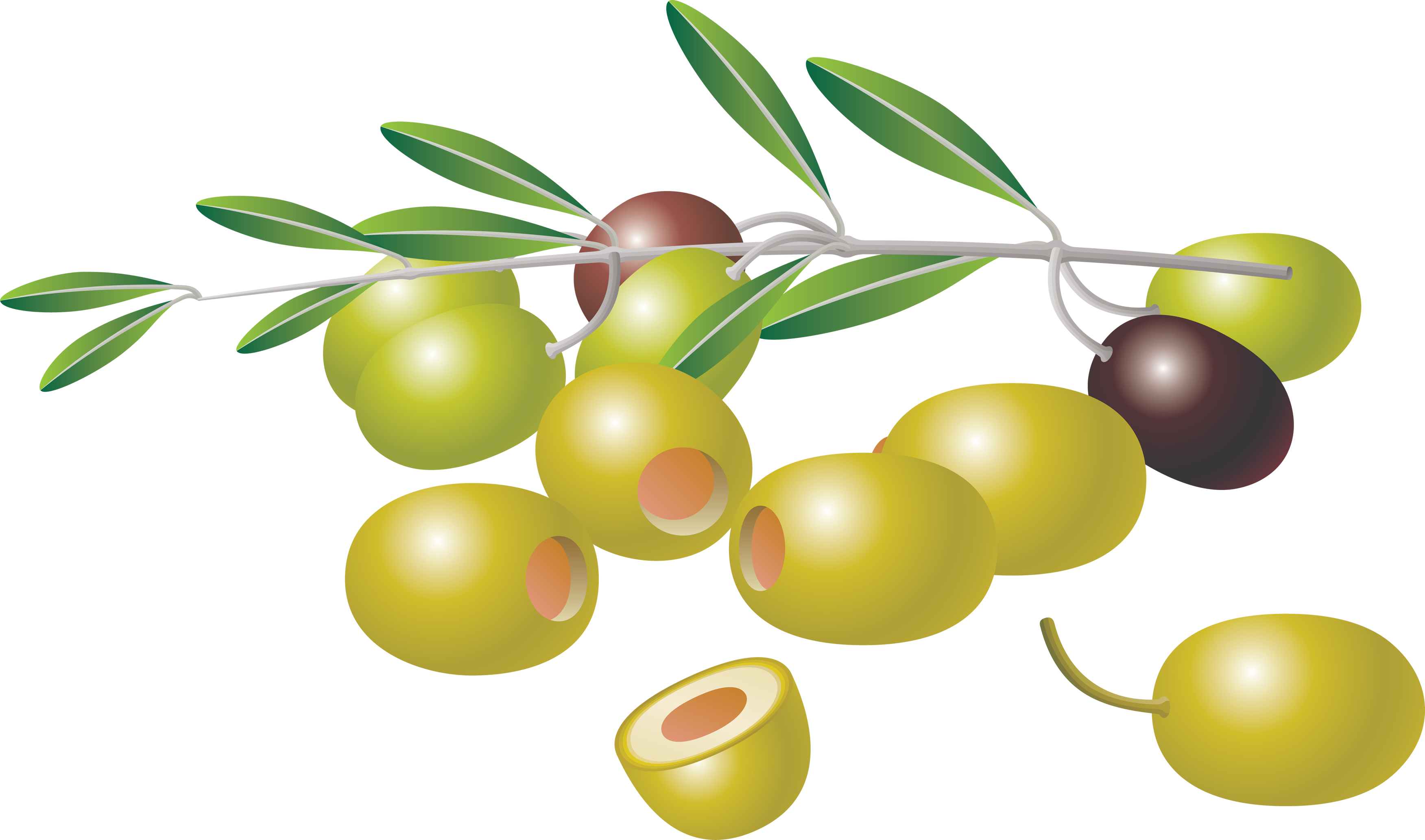 uploads olives olives PNG14317 5