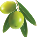 uploads olives olives PNG14320 19