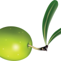uploads olives olives PNG14321 13