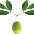 uploads olives olives PNG14324 6