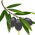 uploads olives olives PNG14326 16