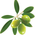 uploads olives olives PNG14327 15