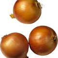 uploads onion onion PNG3817 63