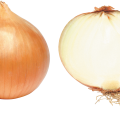 uploads onion onion PNG3825 58