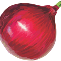 uploads onion onion PNG3828 9