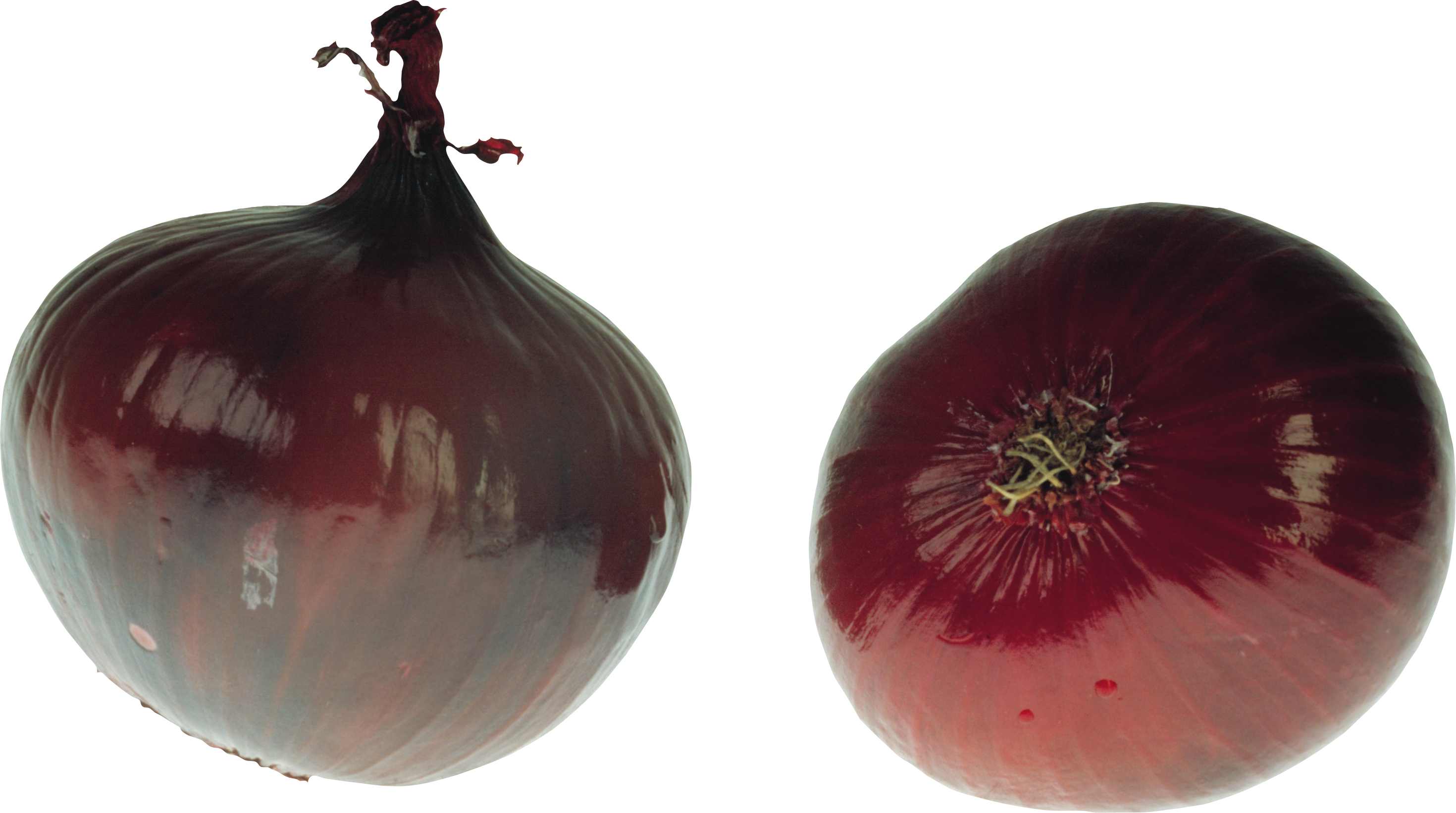 uploads onion onion PNG3829 43