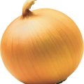 uploads onion onion PNG598 22
