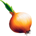 uploads onion onion PNG602 66