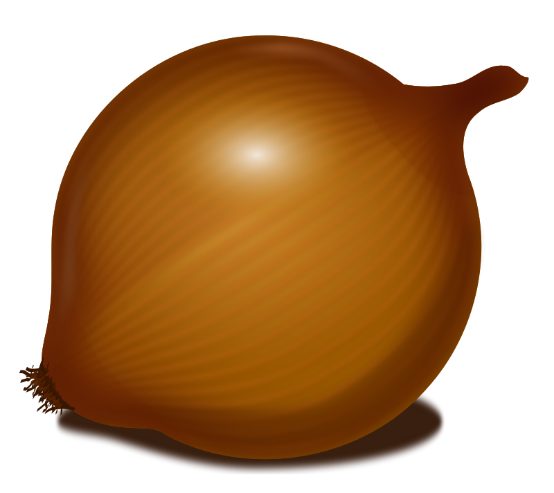 uploads onion onion PNG604 3