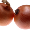 uploads onion onion PNG606 45