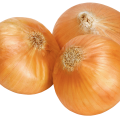 uploads onion onion PNG608 74