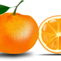 uploads orange orange PNG750 51