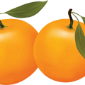 uploads orange orange PNG757 58