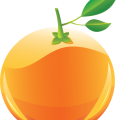uploads orange orange PNG765 51
