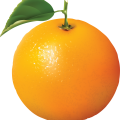 uploads orange orange PNG766 64
