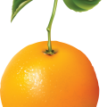 uploads orange orange PNG773 53