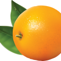 uploads orange orange PNG774 24