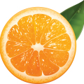 uploads orange orange PNG775 18