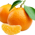 uploads orange orange PNG777 60