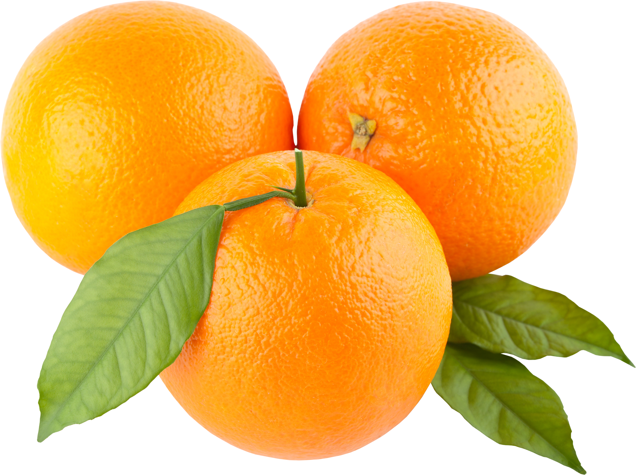 uploads orange orange PNG778 66