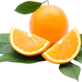 uploads orange orange PNG779 57