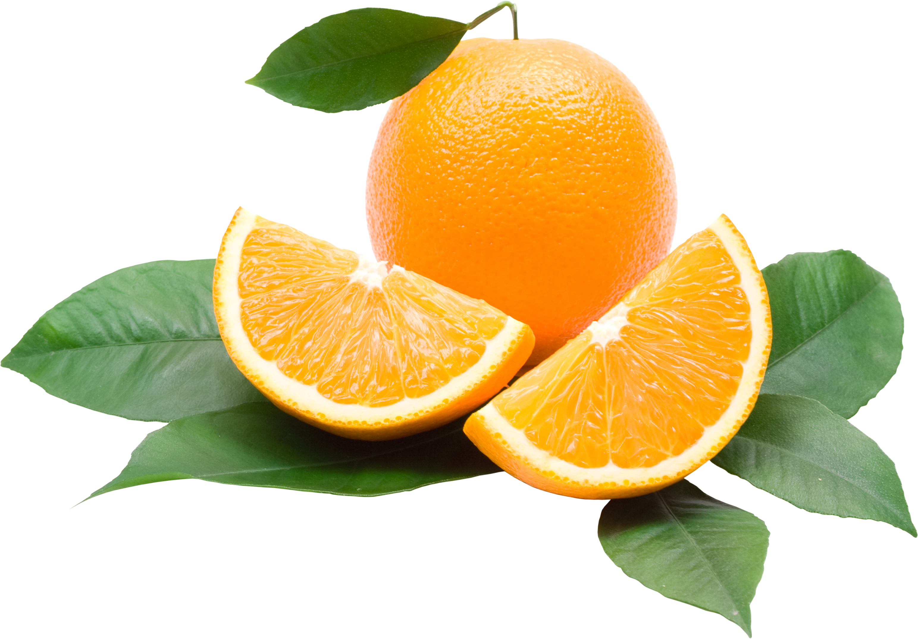 uploads orange orange PNG779 85