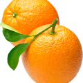 uploads orange orange PNG780 50