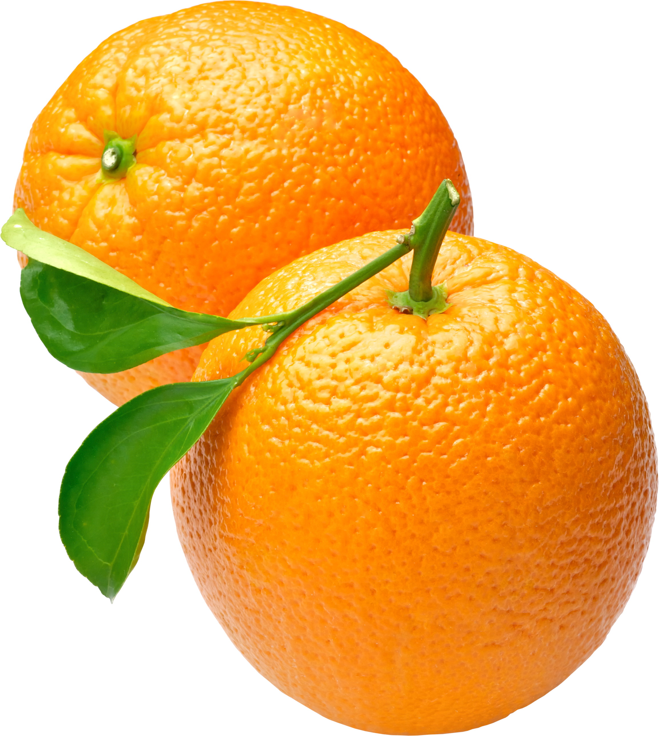 uploads orange orange PNG780 4