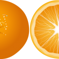 uploads orange orange PNG782 20