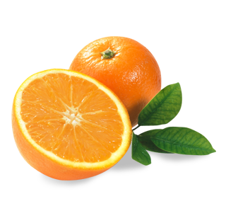 uploads orange orange PNG792 5