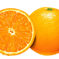 uploads orange orange PNG794 49