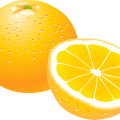uploads orange orange PNG795 8