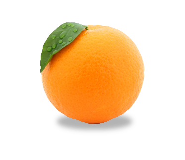 uploads orange orange PNG803 5