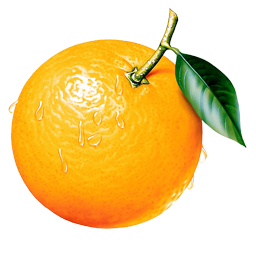 uploads orange orange PNG805 5