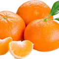 uploads orange orange PNG809 44