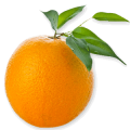 uploads orange orange PNG811 45