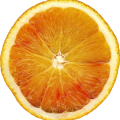 uploads orange orange PNG813 46