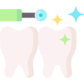 026 dental cleaning 16